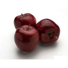 Elma Fidanı Starking