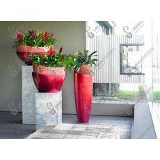 Frezya Vrezya Alev Kılıcı Çiçeği İthal Kırmızı Alacalı Yapraklı Vriesea Splendens