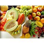 Sertifikalı Meyve Fidanı Çeşitleri Tüplü
