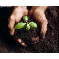 Bahçe Toprağı 1.Sınıf 30 Metreküp Fiyatımızdır