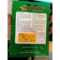 Bamya Tohumu Sultani 10 Gram Sertifikalı Yalova Tohumculuk