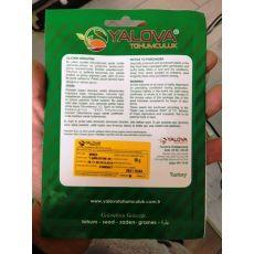 Biber Tohumu Yalova Çarliston 341 Pakette 10 Gram Sertifikalıdır