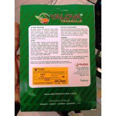 Kabak Tohumu Kolsuz-Kara Çeşidi Pakette 10 Gram Sertifikalıdır