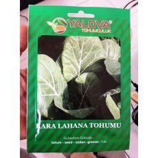 Kara Lahana Tohumu Pakette 10 Gram Sertifikalıdır