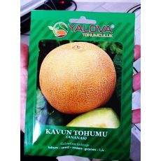 Kavun Tohumu Ananas Çeşidi Pakette 10 Gram Sertifikalıdır