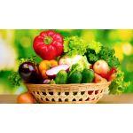 Sebze Fidanı Çeşitleri